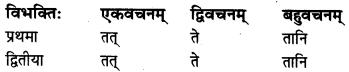 MP Board Class 8th Sanskrit व्याकरण-खण्डः 25