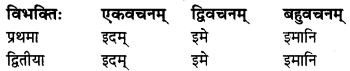 MP Board Class 8th Sanskrit व्याकरण-खण्डः 31
