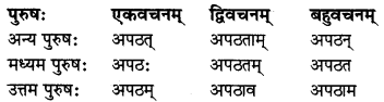 MP Board Class 8th Sanskrit व्याकरण-खण्डः 33