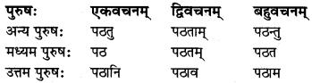 MP Board Class 8th Sanskrit व्याकरण-खण्डः 35