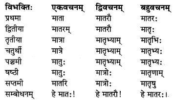 MP Board Class 8th Sanskrit व्याकरण-खण्डः 9