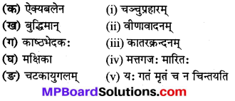 Mp Board Class 8 Sanskrit Solution Chapter 7