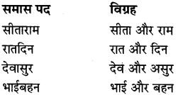 MP Board Class 8th Special Hindi व्याकरण 11