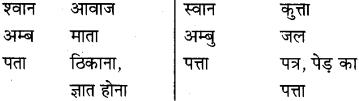 MP Board Class 8th Special Hindi व्याकरण 17