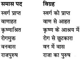 MP Board Class 8th Special Hindi व्याकरण 7