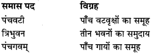 MP Board Class 8th Special Hindi व्याकरण 8