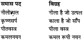 MP Board Class 8th Special Hindi व्याकरण 9