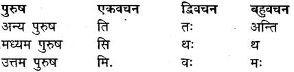 MP Board Class 9th Sanskrit व्याकरण धातु और क्रिया img-1