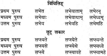 MP Board Class 9th Sanskrit व्याकरण धातु और क्रिया img-25