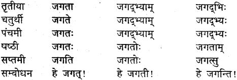 MP Board Class 9th Sanskrit व्याकरण शब्द रूप img-24