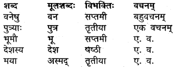 MP Board Class 9th Sanskrit Solutions Chapter 14 वीरबाला img-3