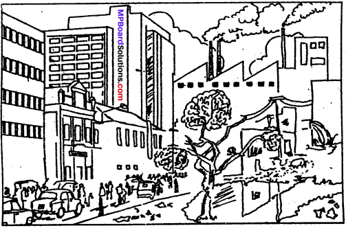 MP Board Class 9th Special English Composition Visual Stimulus 4