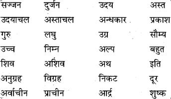 MP Board Class 9th Special Hindi भाषा-बोध image 3s